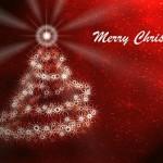 ~ Christmas Cards ~