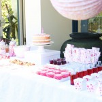 Pink and Mauve Dessert Table