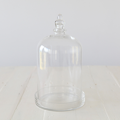 Charlotte Glass Cloche with Dish