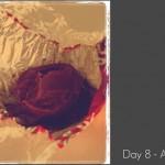 Photography Challenge – Week 2