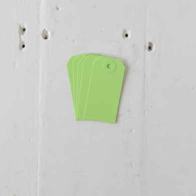 Luggage Tag – Small Green