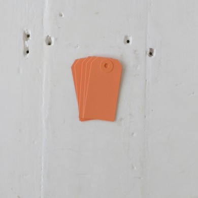Luggage Tag – Small Orange