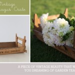 Product Spotlight  ::  Vintage Asparagus Crate
