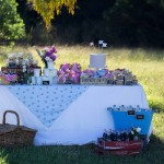 Bella's 1st Birthday Party :: Guest Feature
