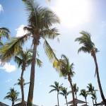 Fiji 2013 – Part 2