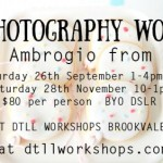 New Photography Workshops at DTLL Workshops
