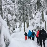 Mt Seymour – Snowshoeing adventures