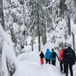 Mt Seymour – Snowshoeing adventures